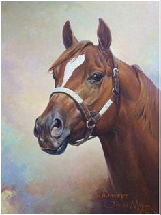 Quarter Horse MJ West