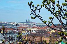 Prague in Spring.