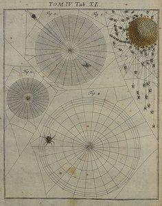 sacredcircle.
