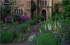 The terrace beyond the Great Hall at Cothay Manor. It is planted with erigerons and Gernaium palmatum, white Campanula latiloba and Dianthus Charles Musgrave.
