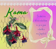 18.7 Kama 18th, Reusable Tote Bags, Blog, Blogging