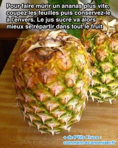 Vous voulez faire mûrir un ananas rapidement ? Voici un p'tit truc simple et efficace pour le manger plus vite.  Découvrez l'astuce ici : http://www.comment-economiser.fr/faire-murir-ananas-rapidement.html?utm_content=buffer6d3ac&utm_medium=social&utm_source=pinterest.com&utm_campaign=buffer