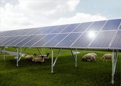 Ground Mounted Solar Panel Support Structure http://www.simplifiedbuilding.com/blog/ground-mounted-solar-panel-support-structure/ #KeeKlamp #industrialpipe #solarpanel