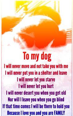 To My Dog