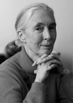 Jane Goodall: The Animals We Are - The Green Interview