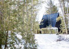 Дом, наполовину исчезающий в лесу