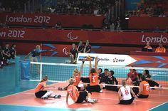 le #volley #assis une discipline #paralympique #handisport