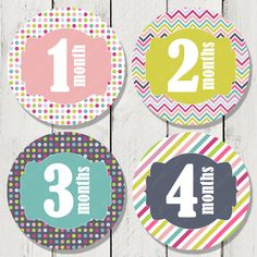 Monthly Milestone Stickers for Girls Monthly by happyhoursprints, $8.99