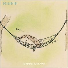 hedgehog sleeping in a hammock