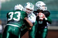 Spring game 2015 : TROY WATSON (Michael Pronzato   Ohio Athletics)