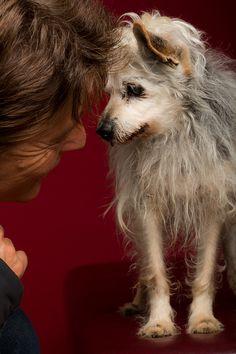 Günni Hanselmann: Great story about a rescue dog. Photo by Elke Vogelsang; story at http://wieselblitz.de/en/2013/10/guenni-hanselmann-2/ MUST READ!!