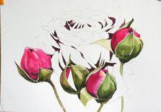 남일 수채화 Gallery Watercolor Rose, Watercolor Paintings, Watercolors, Flower Art, Art Flowers, Art Tutorials, Paper Dolls, Still Life, Floral Design