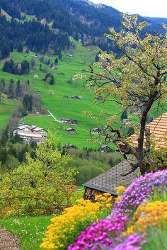 Paisagem em Grindelwald, Suiça