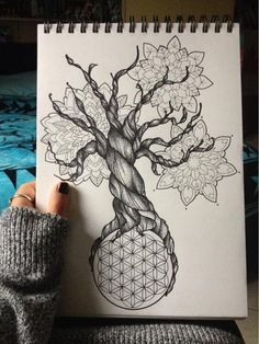 Seed of life, tree of life, flower of life, mandalas