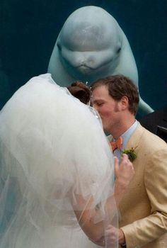 Or a beluga whale. | 32 Tips For Taking The Perfect WeddingPhoto
