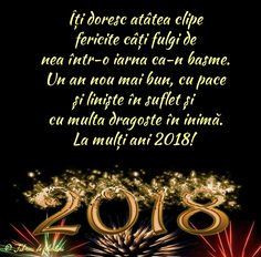 Îți doresc atâtea clipe fericite câți fulgi de nea într-o iarna ca-n basme. Un an nou mai bun, cu pace și liniște în suflet și cu multa dragoste în inimă.