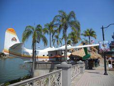 Jimmy Buffett's Margaritaville Orlando Florida