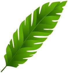 palm leaf png clip art idee motifs terre cuites pinterest rh pinterest com Tropical Plants Clip Art Tropical Clip Art