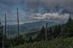 Appalachian Trail from Clingmans Dome to Newfound Gap, Great Smoky Mountains National Park