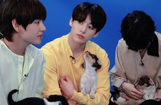 BTS Plays With Puppies While Answering Fan Questions // #VKOOK