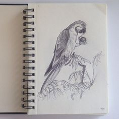 Penna+carta #disegno #comepassareiltempoquandopiove #amore #passione