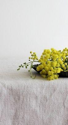 linen & country flowers. www.albertalagrup.com