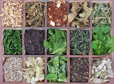 Growing Herbs: tips for growing, harvesting, drying, and storing. Herb Garden, Vegetable Garden, Garden Plants, Growing Herbs, Growing Vegetables, Pot Pourri, Healing Herbs, My Secret Garden, Edible Garden