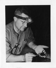 Willis John Gertsch was an entomologist specializing in arachnology. He classified a number of species, including the Brown recluse spider and the Tooth cave spider. Brown Recluse Spider, Spiders, Cave, Tooth, Creatures, Number, History, Halloween, Happy