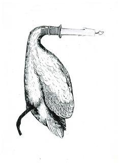 Cisne-vela