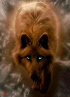 Blue Eyes #wolf - Ok what doggy ancestor gave Wolfie baby blue eyes. Pure wolves don't get them by nature. Some ancestor must have done some messing around. Wolves mate for life but a female in heat is a female in heat!