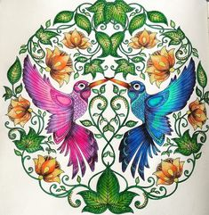 jardim secreto desenho colorido dos beija flor - Pesquisa Google