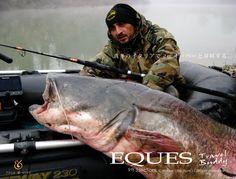 真冬のイタリアでのヨーロッパオオナマズ釣り