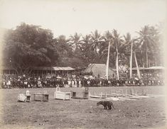 In the 19th century, Java was divided into administrative residencies that each consisted of different regencies. The Regents and their families formed the...