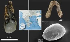 Search for the 7.2m year-oldfossils that could rewrite human history