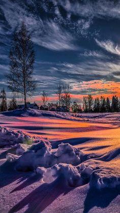 Сказочная зима... - Olla Kozlovska - Google+