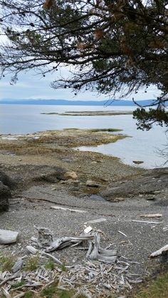 how to get to hornby island from vancouver