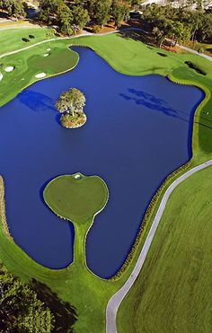 TPC Sawgrass 17th hole Island Green. I want to play this course and hit this green.