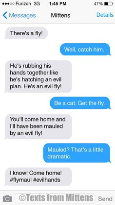NEW Daily Mittens: The Evil Fly Edition More Mittens: http://textsfrommittens.com/  Order the Mittens book: http://www.amazon.com/Texts-From-Mittens-Unlimited-Afraid/dp/0373893221