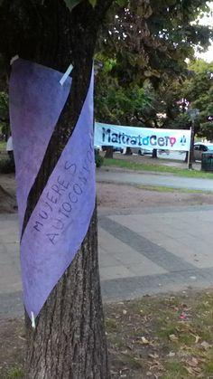 Llega Maltratocero ONG a Bragado