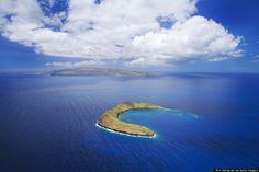 ハワイ・モロキニ島は、夢が叶う島 シュノーケリングを楽しもう(画像)|The Huffington Post