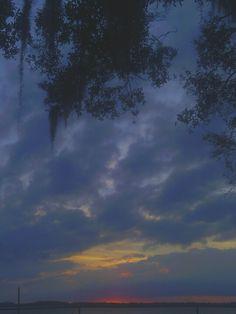 Back yard sunsets