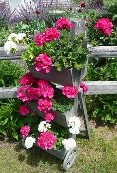 garden - geraniums on a stand Container Flowers, Container Plants, Container Gardening, Dream Garden, Garden Art, Garden Design, Box Garden, Pink Geranium, Pot Plante