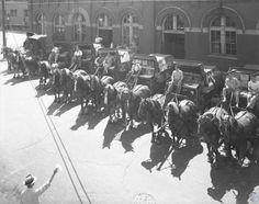 Wiedemann's Beer horse deliverers. George Wiedemann Company. Newport