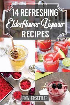 Elderflower Liqueur Recipes...