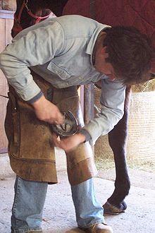 Maréchal-ferrant - Wikipédia