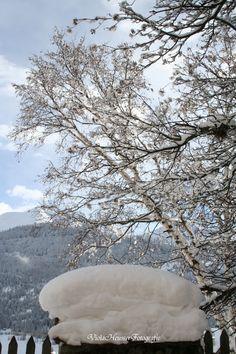 Winter in Zernez