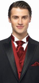 Dessy Iridescent Taffeta Cravat Groomsmen Accessories in Royal Red