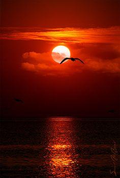اشرقت شمس الوداع <3 by Saud Al-Ageel, via 500px