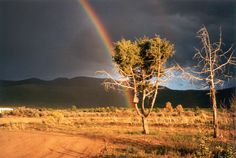 Rainbow, Taos New Mexico. Photo by Linda Glickstein
