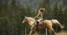 Como fazer um cavalo xucro galopar sem tentar derrubar você. O galope é a mais rápida das quatro etapas do andar de um cavalo. Embora seja semelhante à marcha, o galope é mais rápido, com um passo alongado e tem quatro batidas em vez de três. Se um cavalo não está disposto a galopar, ele pode não estar em boas condições, e isso deve ser tratado antes de pedir que o cavalo ande novamente. Dificilmente um ...